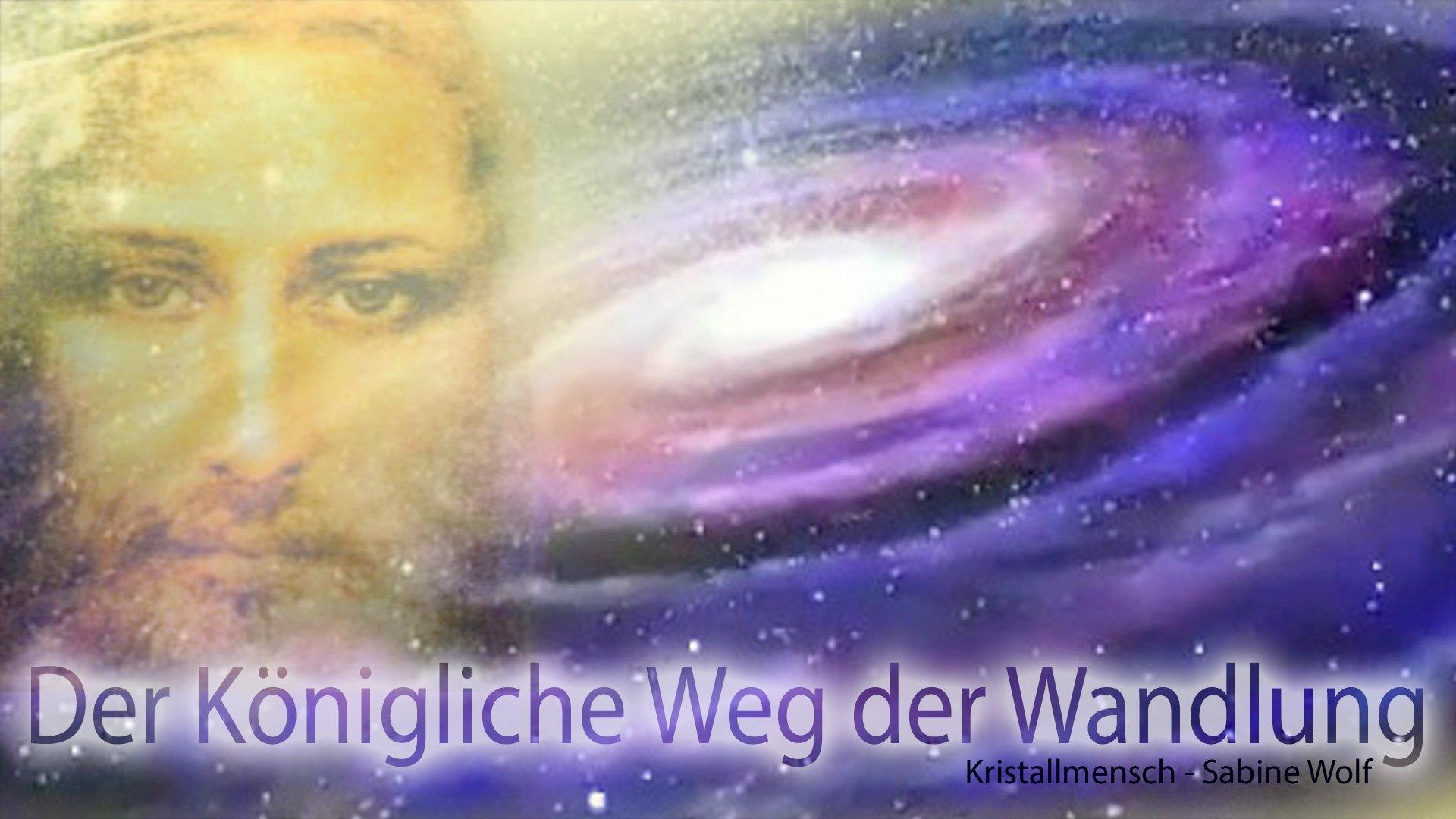 24_12_Der_koenigliche_Weg