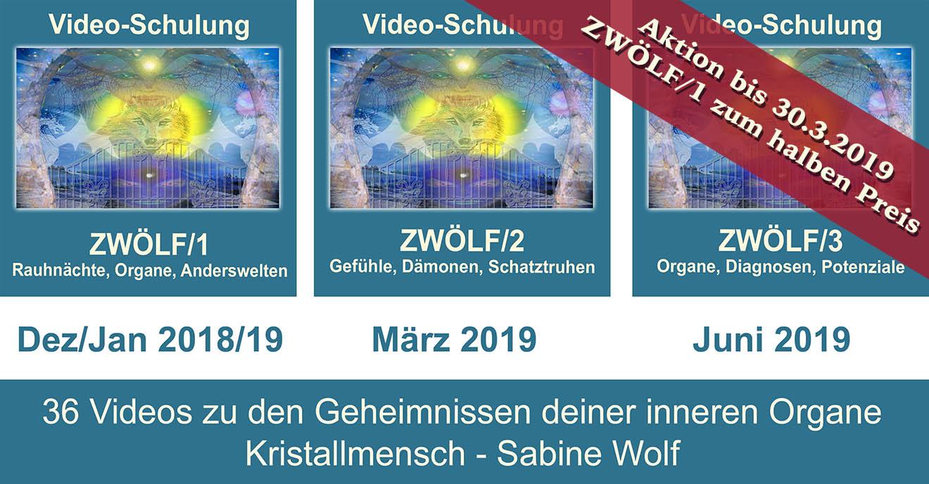 Aktion ZWÖLF/1 und 2