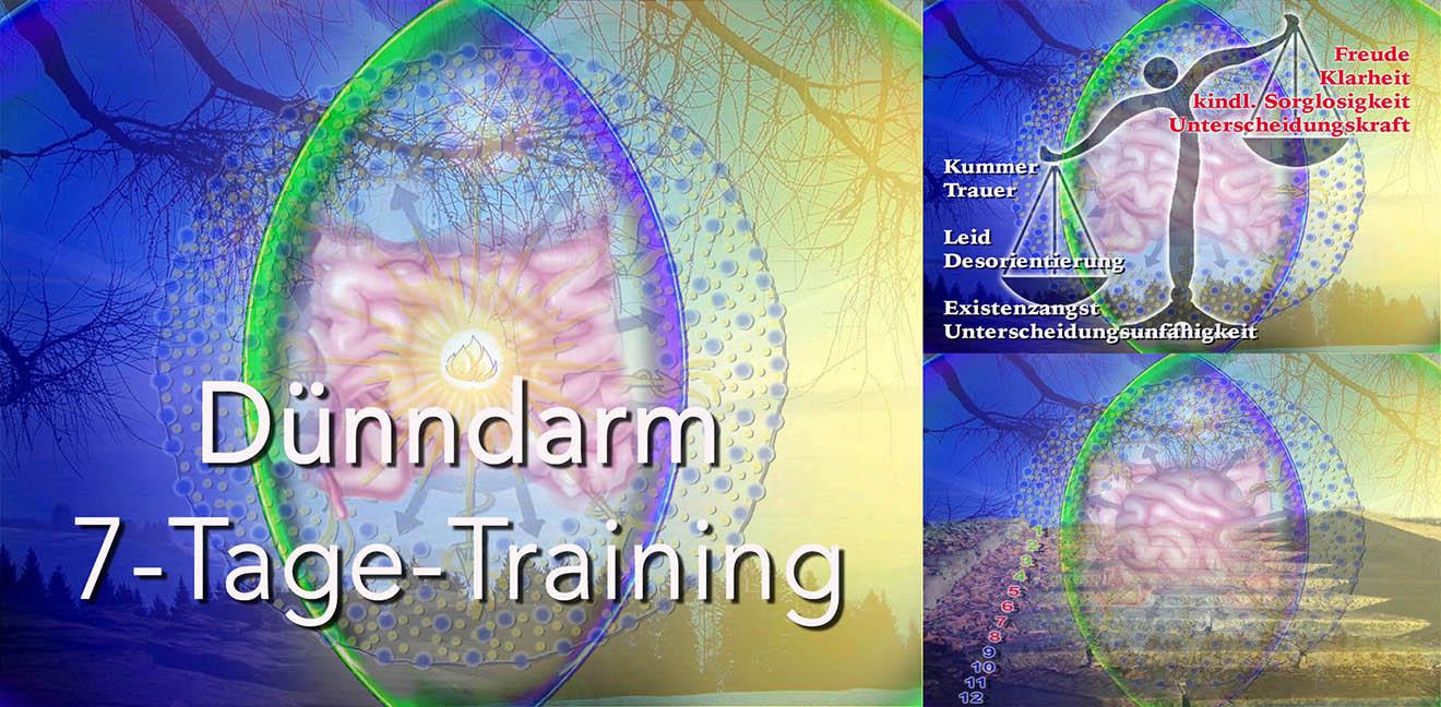 Dünndarm-Training-Banner